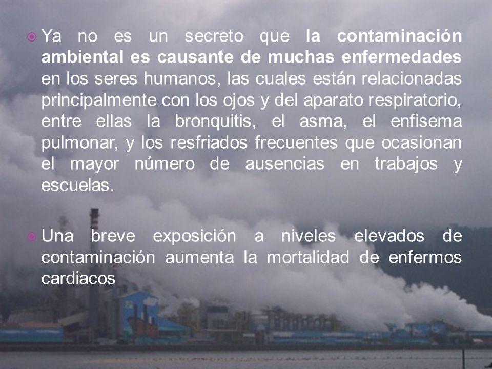 Ya no es un secreto que la contaminación ambiental es causante de muchas enfermedades en los seres humanos, las cuales están relacionadas principalmen