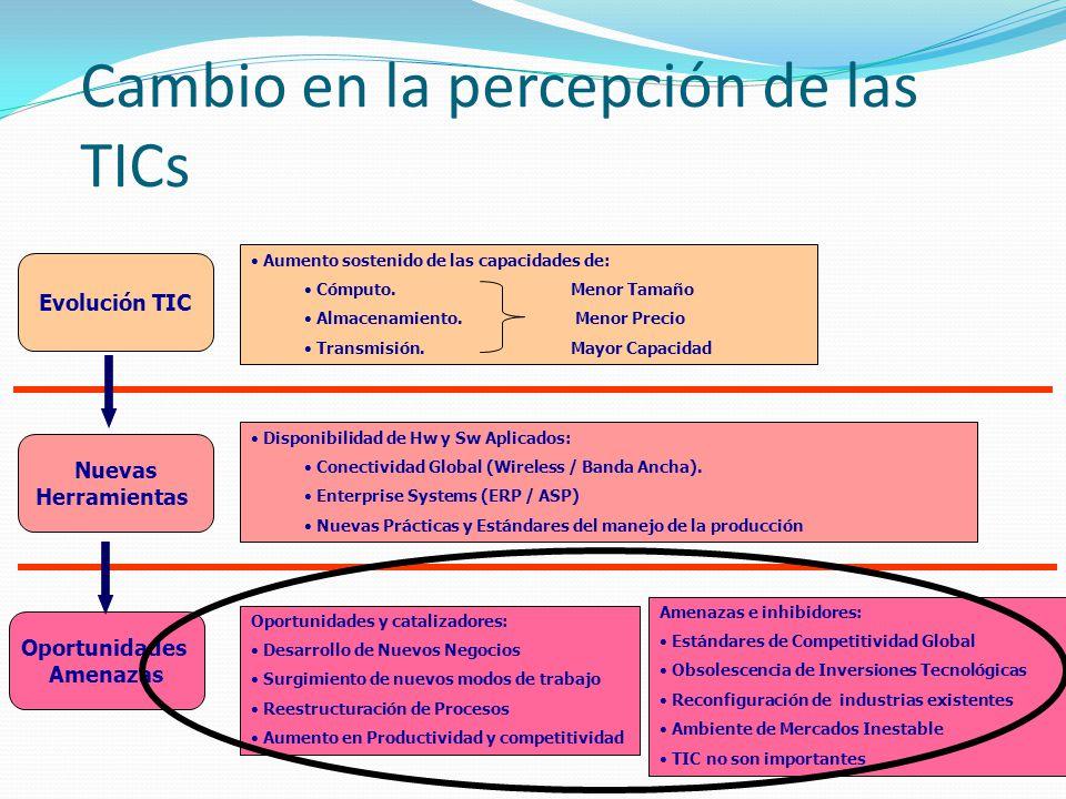 Cambio en la percepción de las TICs Evolución TIC Nuevas Herramientas Oportunidades Amenazas Oportunidades y catalizadores: Desarrollo de Nuevos Negoc
