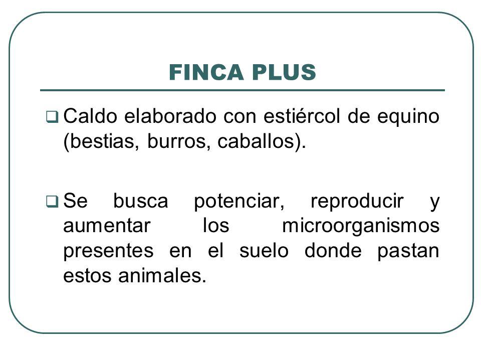 FINCA PLUS Caldo elaborado con estiércol de equino (bestias, burros, caballos). Se busca potenciar, reproducir y aumentar los microorganismos presente