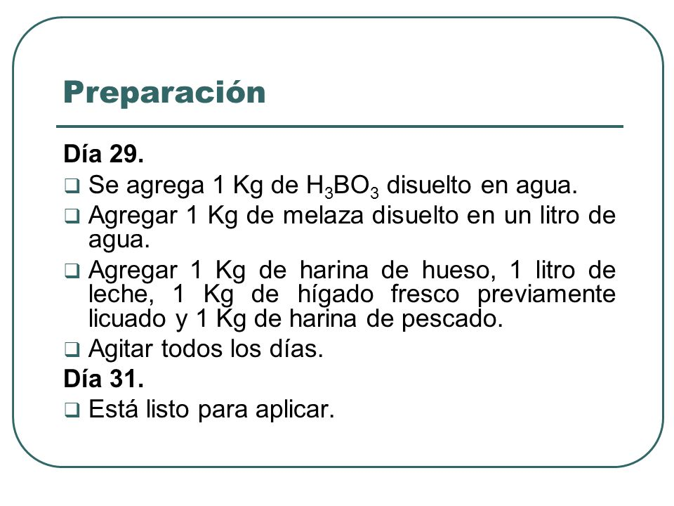 Preparación Día 29. Se agrega 1 Kg de H 3 BO 3 disuelto en agua. Agregar 1 Kg de melaza disuelto en un litro de agua. Agregar 1 Kg de harina de hueso,
