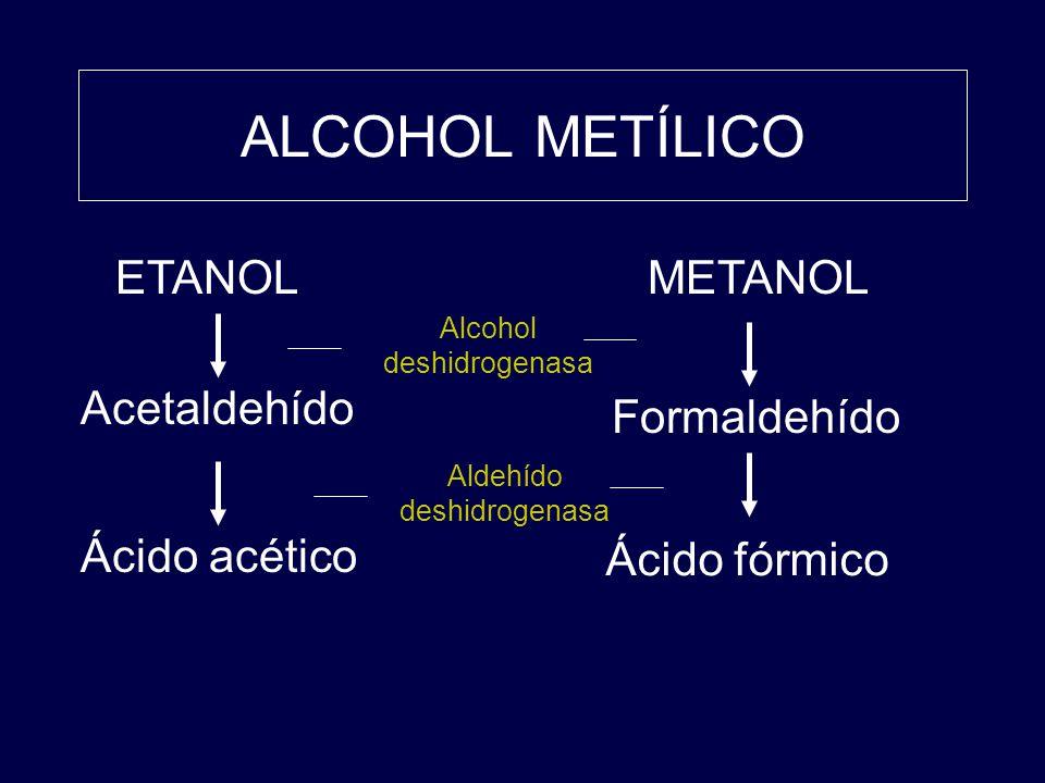 ALCOHOL METÍLICO ETANOL METANOL Acetaldehído Formaldehído Ácido acético Ácido fórmico Alcohol deshidrogenasa Aldehído deshidrogenasa