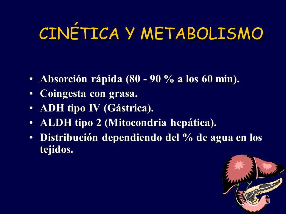 CINÉTICA Y METABOLISMO Absorción rápida (80 - 90 % a los 60 min).Absorción rápida (80 - 90 % a los 60 min). Coingesta con grasa.Coingesta con grasa. A
