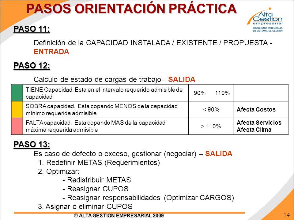 14 © ALTA GESTIÓN EMPRESARIAL 2009 PASO 11: Definición de la CAPACIDAD INSTALADA / EXISTENTE / PROPUESTA - ENTRADA PASO 12: Calculo de estado de carga