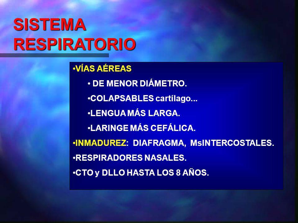 SISTEMA RESPIRATORIO VÍAS AÉREAS DE MENOR DIÁMETRO.