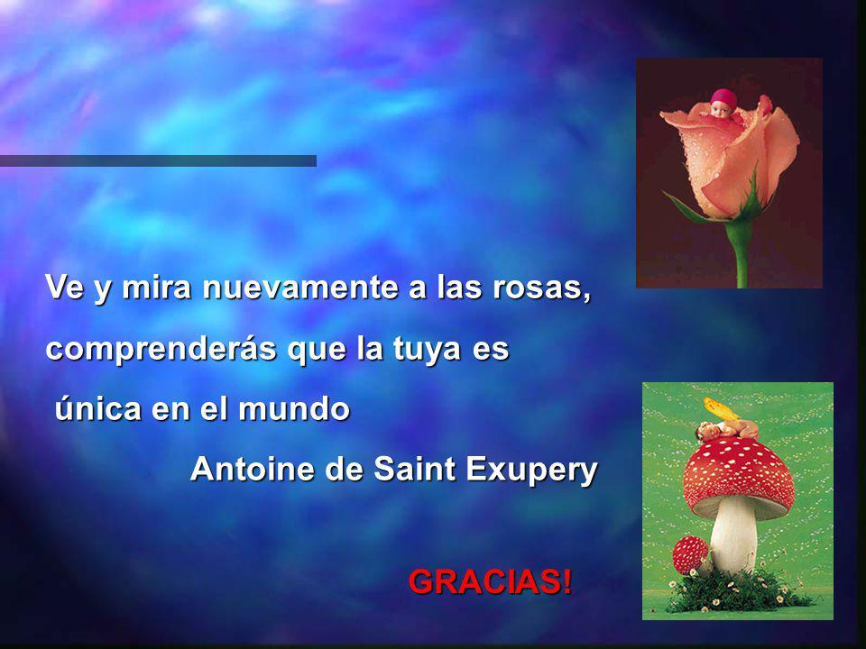 Ve y mira nuevamente a las rosas, comprenderás que la tuya es única en el mundo única en el mundo Antoine de Saint Exupery GRACIAS!