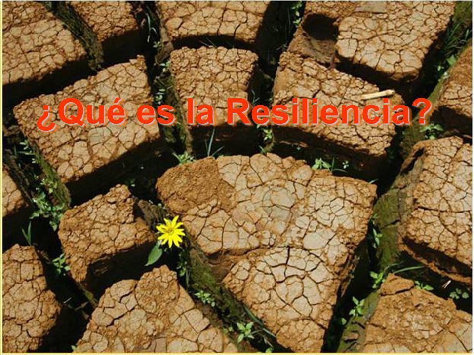 ¿Qué es la Resiliencia? ¿Qué es la Resiliencia?