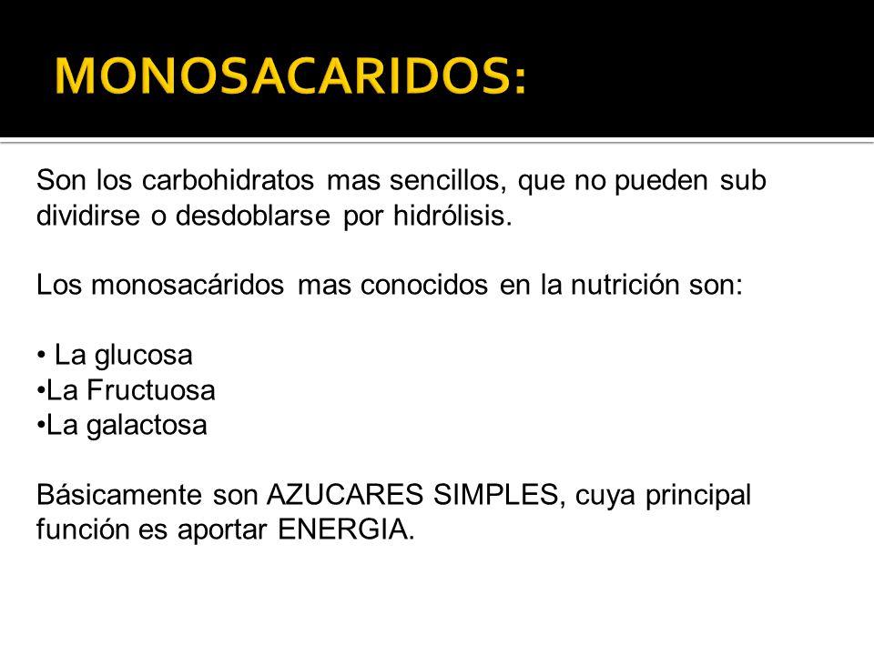 Son los carbohidratos mas sencillos, que no pueden sub dividirse o desdoblarse por hidrólisis. Los monosacáridos mas conocidos en la nutrición son: La