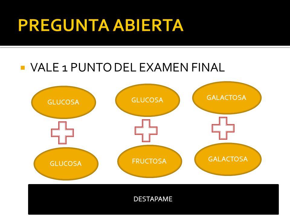 VALE 1 PUNTO DEL EXAMEN FINAL GLUCOSA MALTOSA GLUCOSA FRUCTOSA SACAROSA GALACTOSA lactosa DESTAPAME