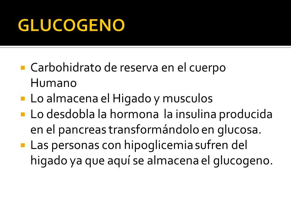 Carbohidrato de reserva en el cuerpo Humano Lo almacena el Higado y musculos Lo desdobla la hormona la insulina producida en el pancreas transformándo