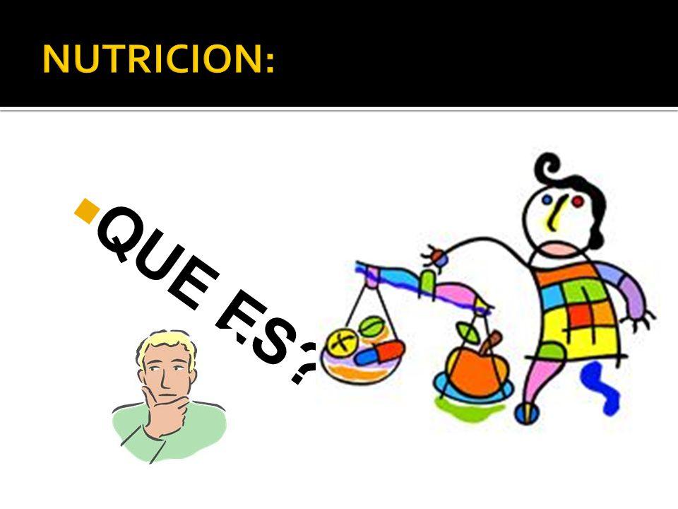 Si en vez de estar en reposo absoluto desarrollamos alguna actividad física, nuestras necesidades energéticas aumentan.