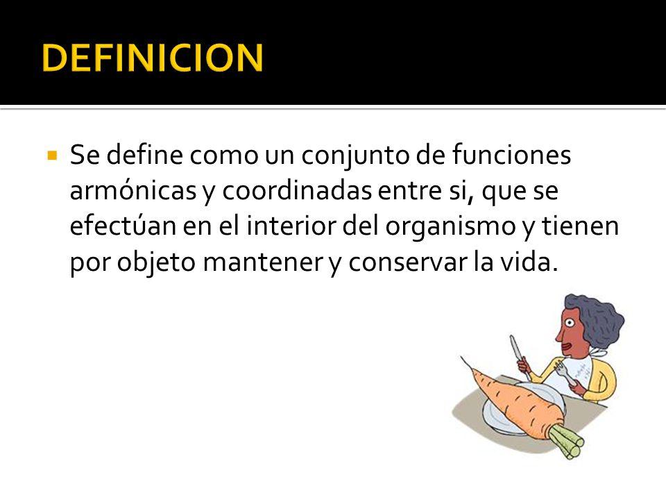 Se define como un conjunto de funciones armónicas y coordinadas entre si, que se efectúan en el interior del organismo y tienen por objeto mantener y