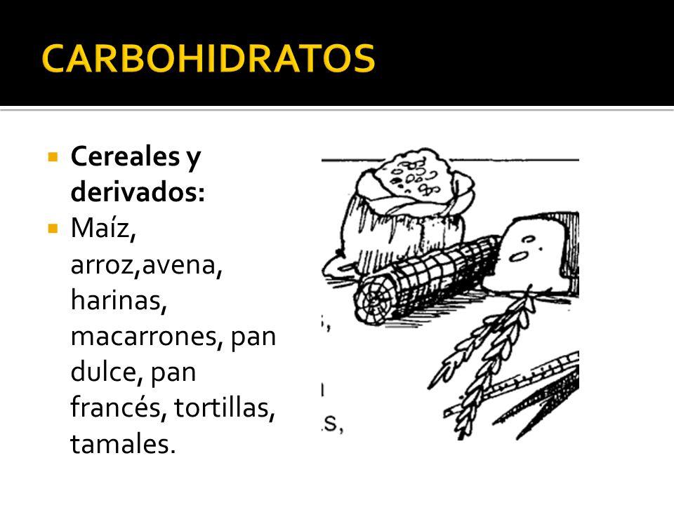 Cereales y derivados: Maíz, arroz,avena, harinas, macarrones, pan dulce, pan francés, tortillas, tamales.