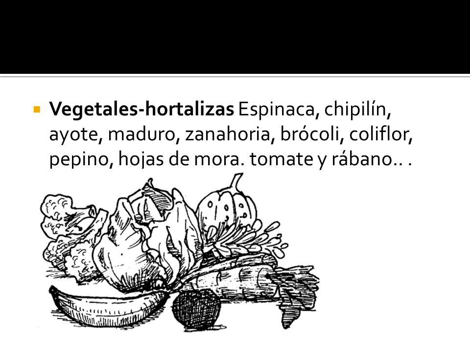 Vegetales-hortalizas Espinaca, chipilín, ayote, maduro, zanahoria, brócoli, coliflor, pepino, hojas de mora. tomate y rábano...
