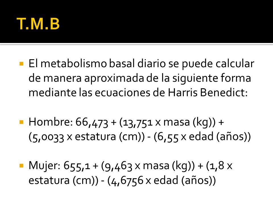 El metabolismo basal diario se puede calcular de manera aproximada de la siguiente forma mediante las ecuaciones de Harris Benedict: Hombre: 66,473 +