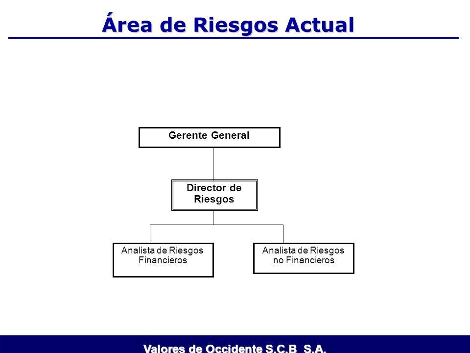 Área de Riesgos Actual Gerente General Director de Riesgos Analista de Riesgos Financieros Analista de Riesgos no Financieros Valores de Occidente S.C
