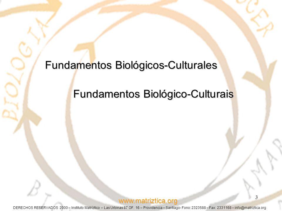 DERECHOS RESERVADOS 2000 – Instituto Matríztico – Las Urbinas 87 OF.