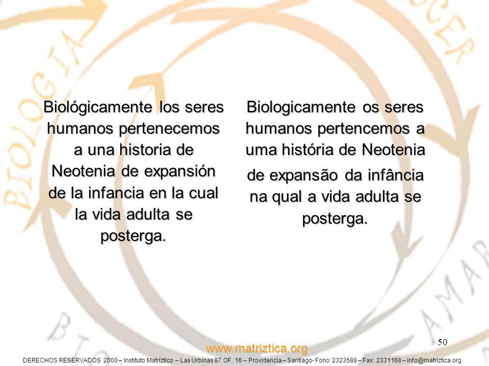DERECHOS RESERVADOS 2000 – Instituto Matríztico – Las Urbinas 87 OF. 16 – Providencia – Santiago- Fono: 2323588 – Fax: 2331168 – info@matriztica.org w