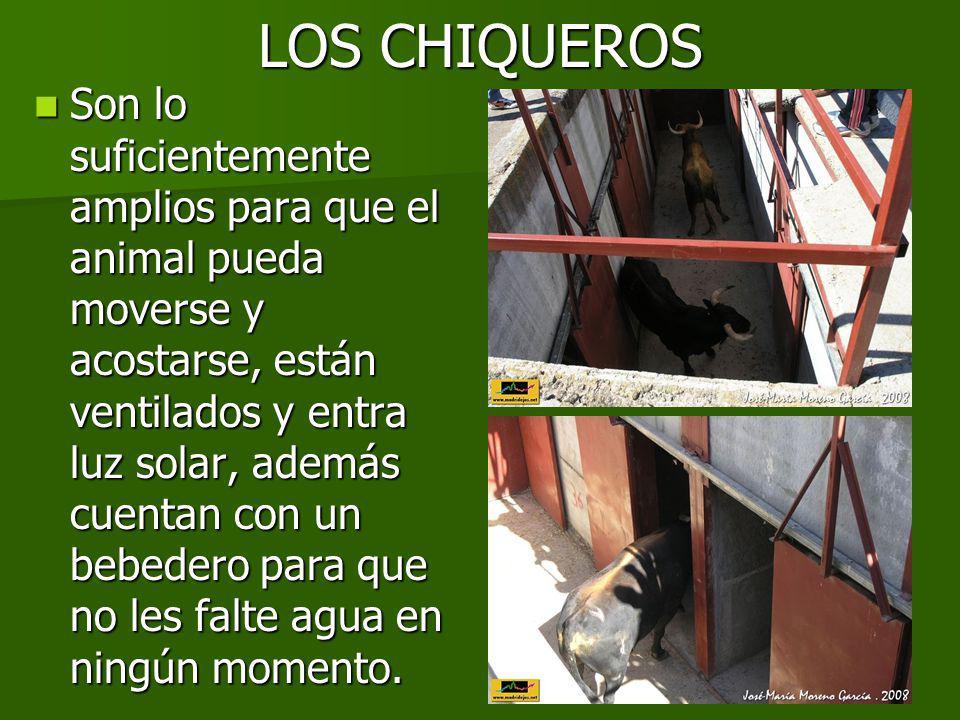 ASÍ MUEREN ESTOS ANIMALES Este es un trato desalmado, poco higiénico y sumamente cruel.