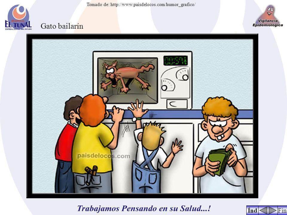FinÍnd Tomado de: http://www.paisdelocos.com/humor_grafico/ Gato bailarín
