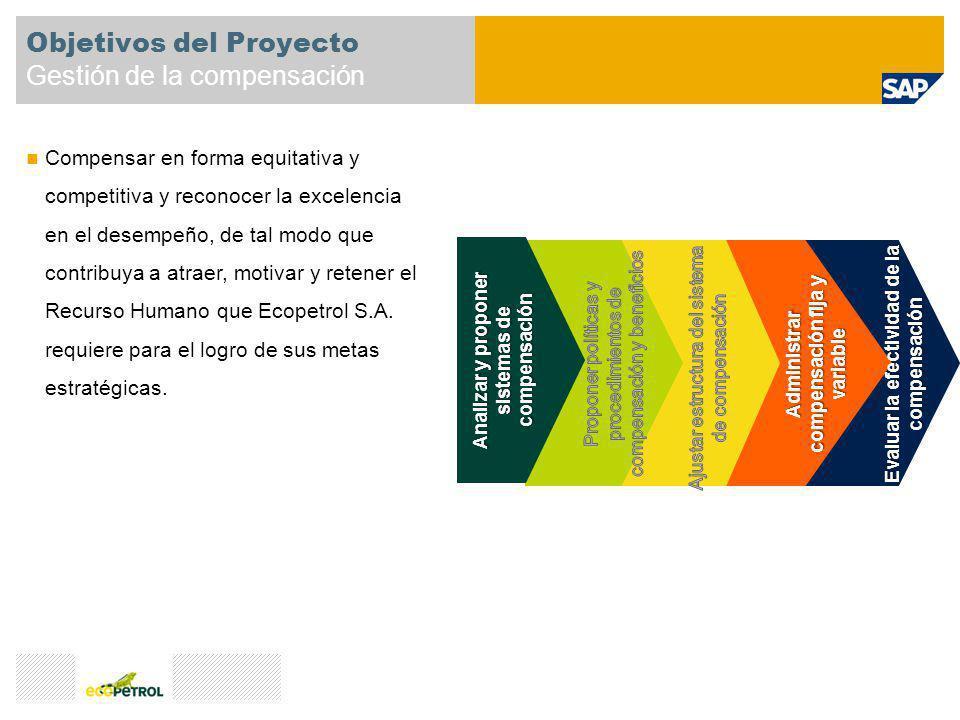 Objetivos del Proyecto Gestión de la compensación Compensar en forma equitativa y competitiva y reconocer la excelencia en el desempeño, de tal modo q