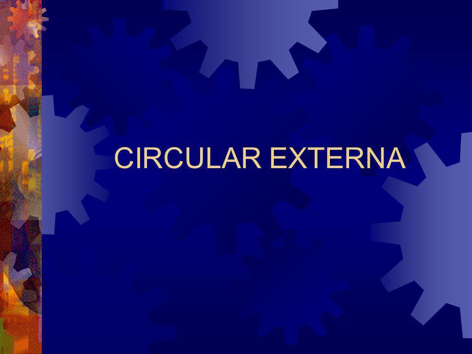 CIRCULAR EXTERNA