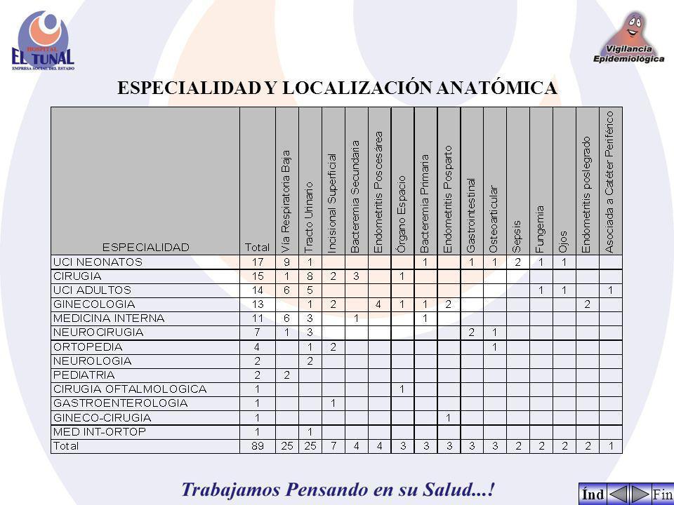 ESPECIALIDAD Y LOCALIZACIÓN ANATÓMICA FinÍnd