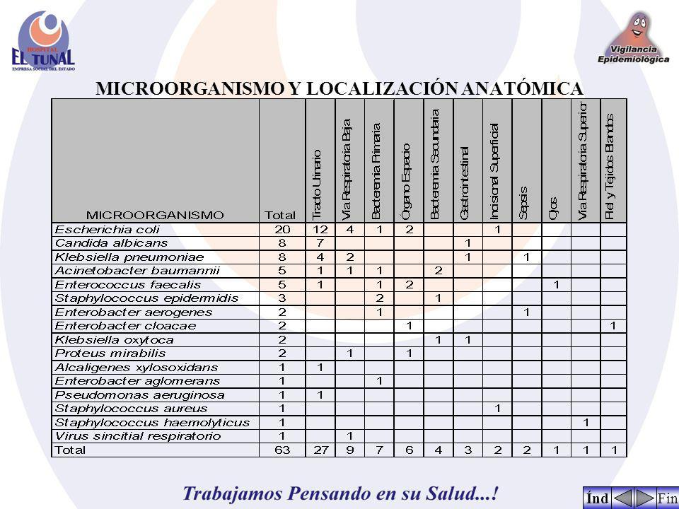 ANÁLISIS Durante el mes de marzo de 2009, nuevamente logramos éxito en el plan de prevención de infección por Sthapylococcus aureus resistente a la meticilina, completamos así 5 meses en el último año, en los que este microorganismo no fue identificado como causal de infección adquirida en el hospital.
