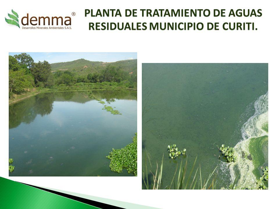 PLANTA DE TRATAMIENTO DE AGUAS RESIDUALES MUNICIPIO DE CURITI.