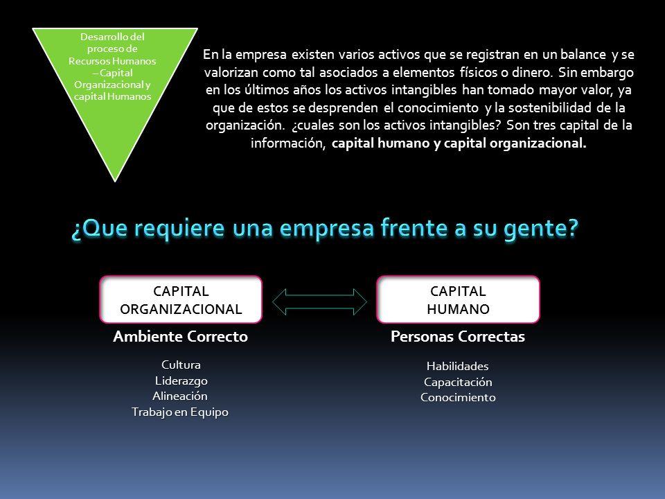 En la empresa existen varios activos que se registran en un balance y se valorizan como tal asociados a elementos físicos o dinero.