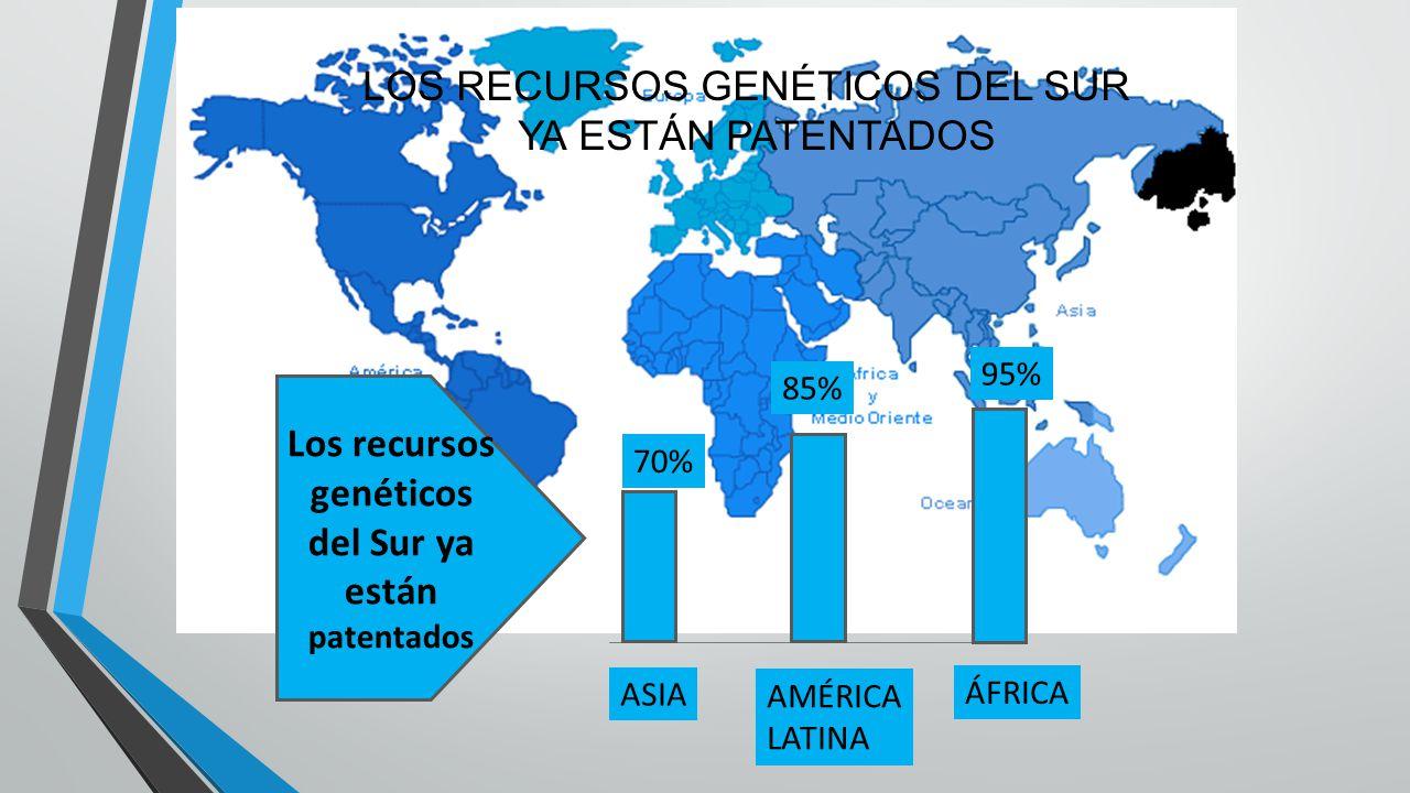 LOS RECURSOS GENÉTICOS DEL SUR YA ESTÁN PATENTADOS Los recursos genéticos del Sur ya están patentados ASIA AMÉRICA LATINA ÁFRICA 70% 95% 85%