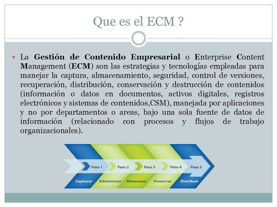 Que es el ECM .