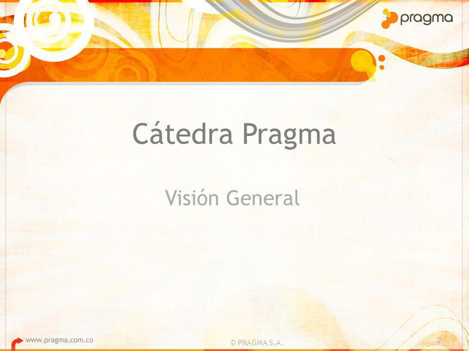 Cátedra Pragma Visión General 2 © PRAGMA S.A.