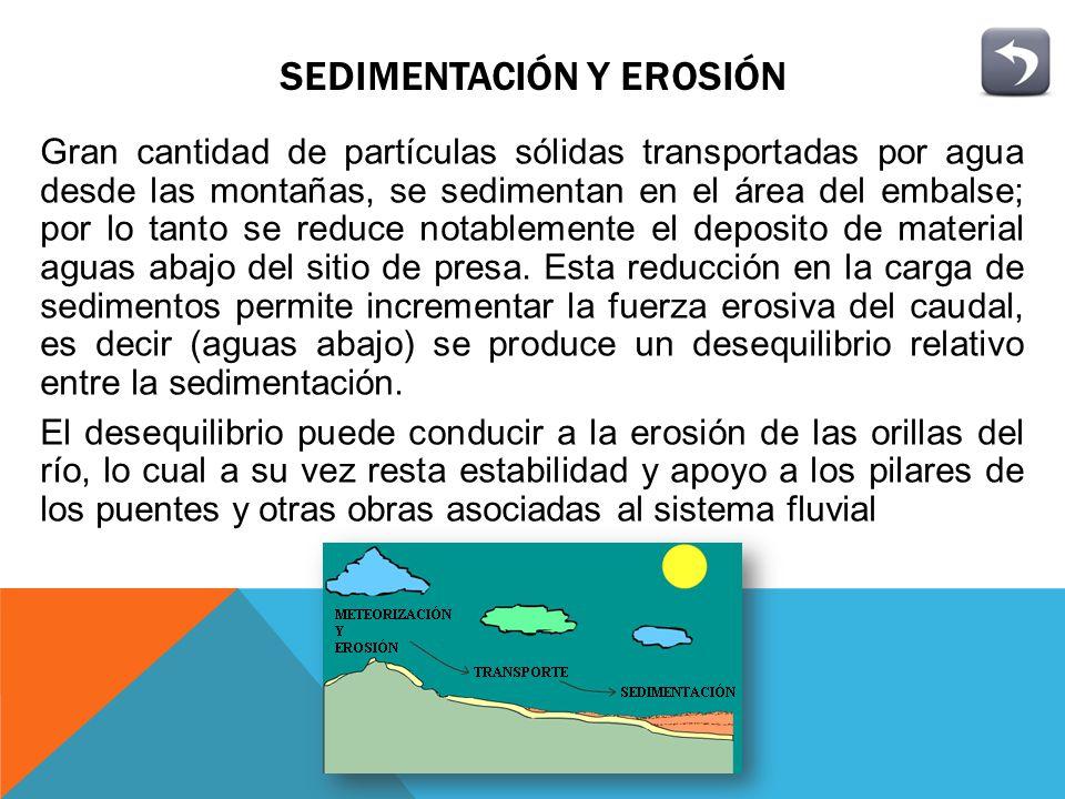EUTROFICACIÓN Es un proceso evolutivo, natural o provocado, debido al aumento progresivo de nutrientes en el lago que causan un enriquecimiento cada vez mayor en algas
