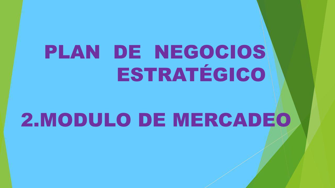 2.MODULO DE MERCADEO PLAN DE NEGOCIOS ESTRATÉGICO