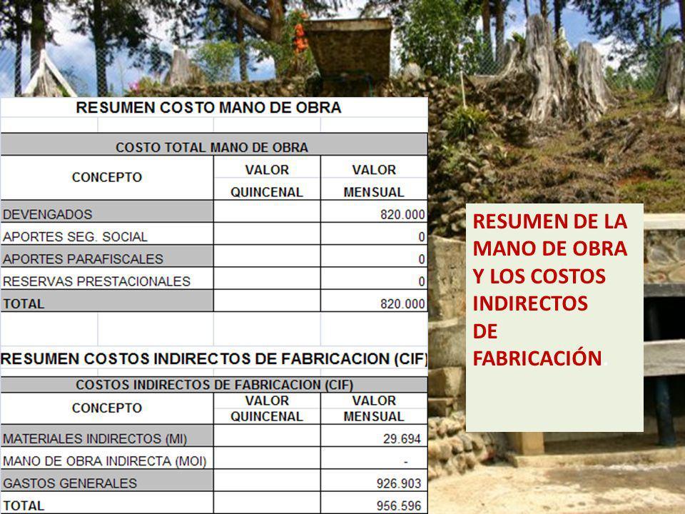 RESUMEN DE LA MANO DE OBRA Y LOS COSTOS INDIRECTOS DE FABRICACIÓN.