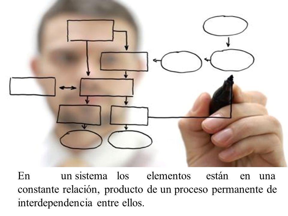 Teoría de la complejidad Una reflexión orientada para que las ciencias sociales busquen un sentido de entendimiento del carácter multidimensional de toda realidad y dentro de ésta, del hombre como parte de un sistema eco-social amplio y múltiple.