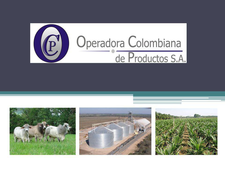 COSTOS SEGUIMIENTO Y VERIFICACIÓN CDM´S y/o PROCESOS INDUSTRIALIZADOS OPERADORA COLOMBIANA DE PRODUCTOS S.A.