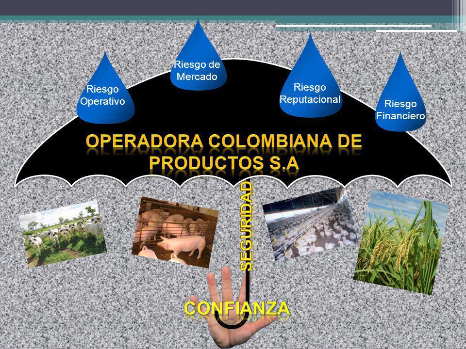 Riesgo Operativo Riesgo de Mercado Riesgo Reputacional Riesgo Financiero