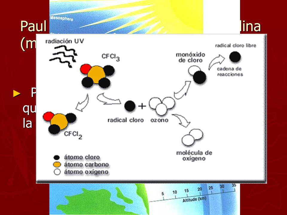 Paul Crutzen (holandés), Mario Molina (mexicano), Frank Sherwood Rowland (USA) Premio Nobel 1995, por su trabajo en química de la atmosfera, especialm