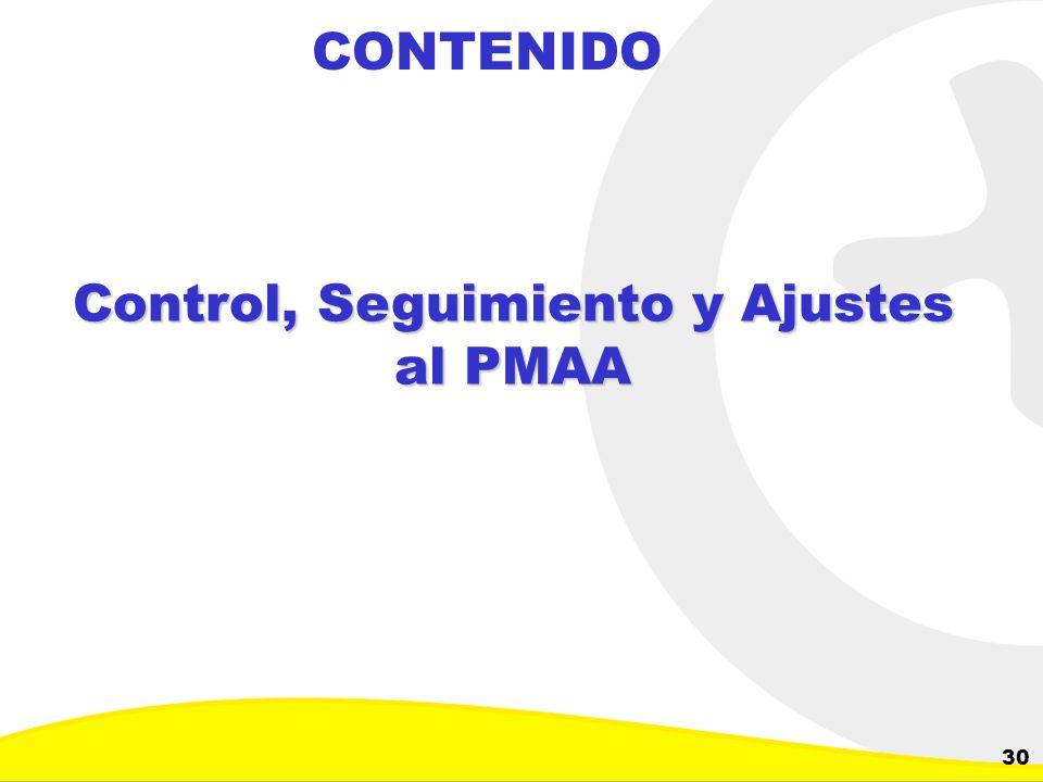 Dirección de Planeación y Control de Inversiones Gerencia Corporativa de Planeamiento y Control 30 CONTENIDO Control, Seguimiento y Ajustes al PMAA