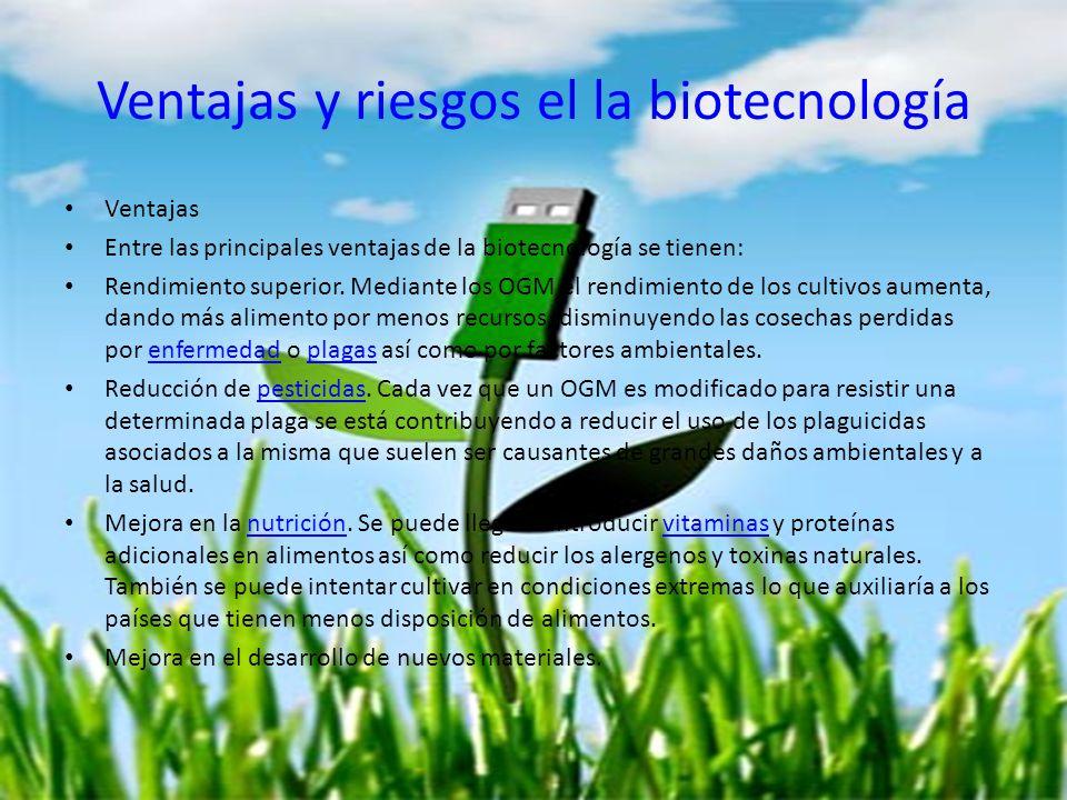 Ventajas y riesgos el la biotecnología Ventajas Entre las principales ventajas de la biotecnología se tienen: Rendimiento superior. Mediante los OGM e