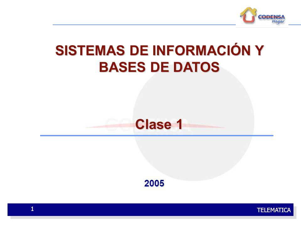TELEMATICA 1 SISTEMAS DE INFORMACIÓN Y BASES DE DATOS Clase 1 2005