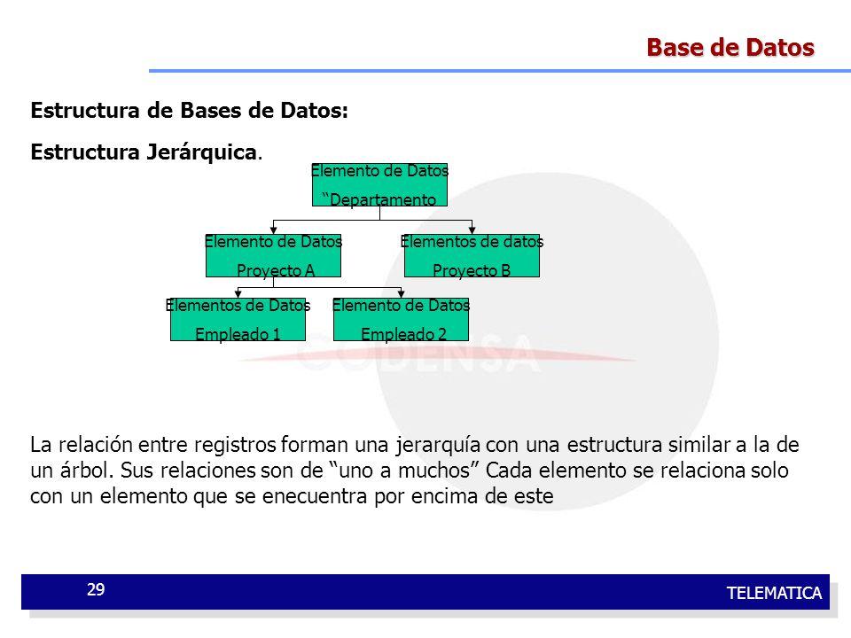 TELEMATICA 29 Base de Datos Estructura de Bases de Datos: Estructura Jerárquica. La relación entre registros forman una jerarquía con una estructura s
