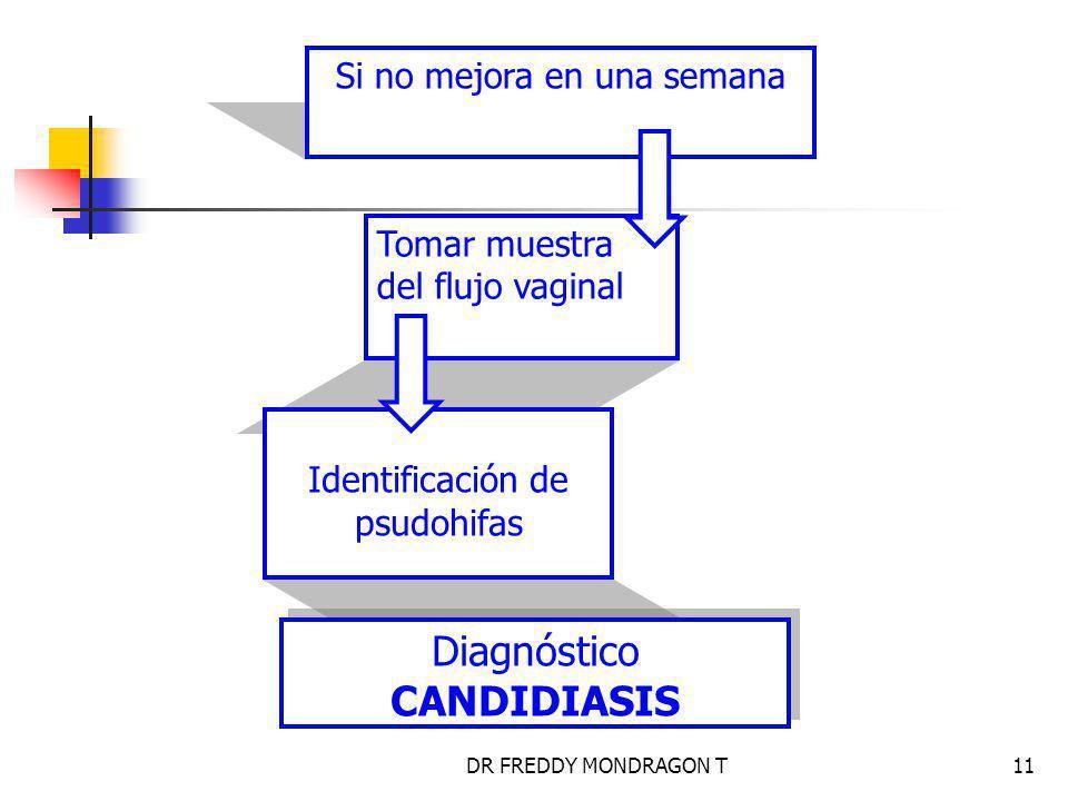 DR FREDDY MONDRAGON T11 Si no mejora en una semana Tomar muestra del flujo vaginal Identificación de psudohifas Diagnóstico CANDIDIASIS Diagnóstico CANDIDIASIS