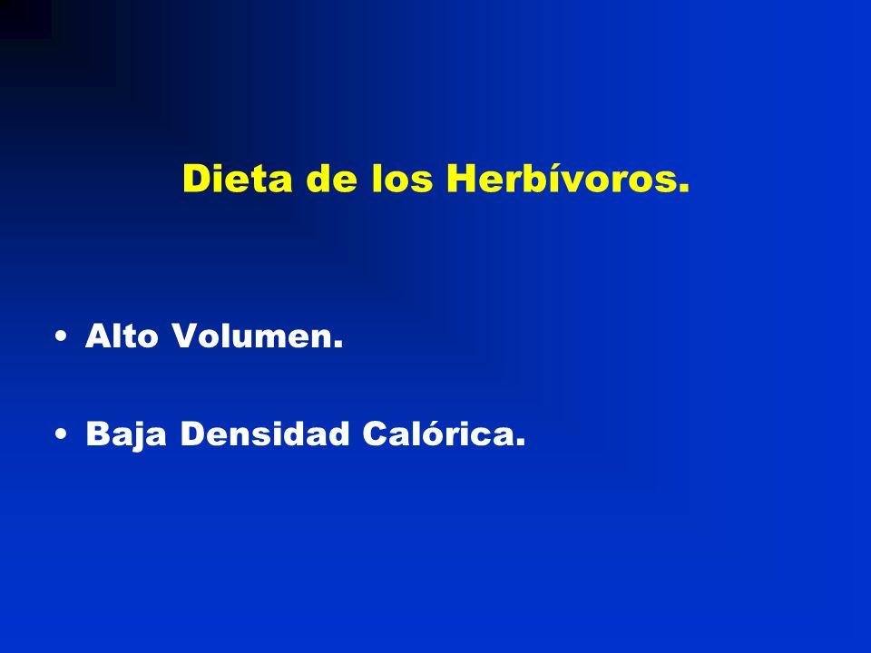 Dieta de los Herbívoros. Alto Volumen. Baja Densidad Calórica.