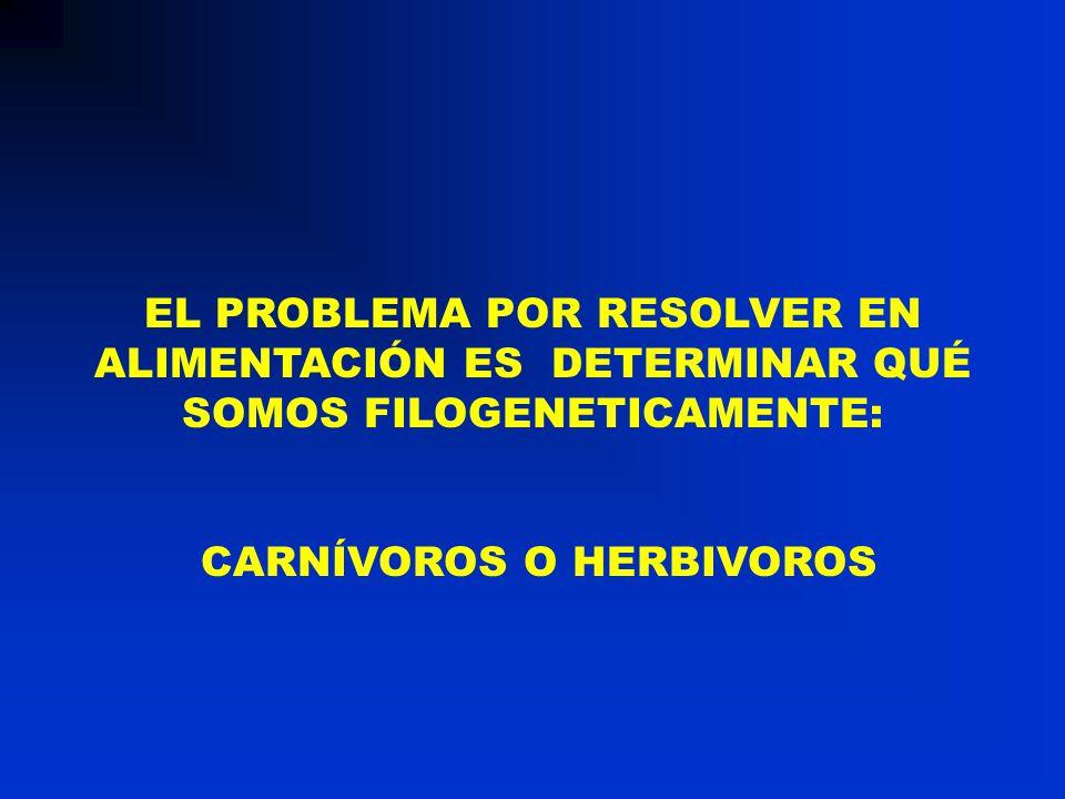Factor 0,24 = 0,0034 x 0,07 x 1000 Contenido de hierro de la hemoglobina: 0,34%.