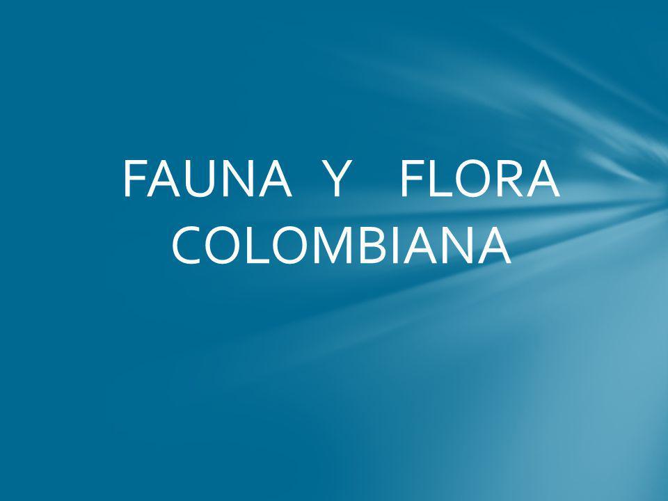 FAUNA Y FLORA COLOMBIANA