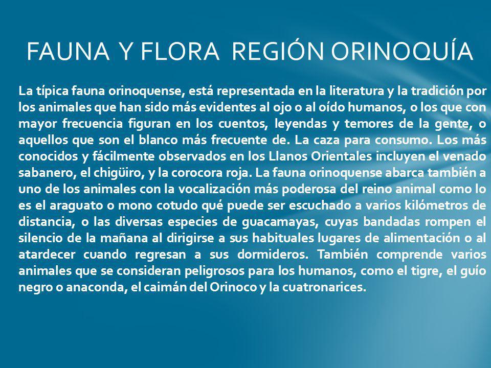 FAUNA Y FLORA REGIÓN ORINOQUÍA La típica fauna orinoquense, está representada en la literatura y la tradición por los animales que han sido más eviden