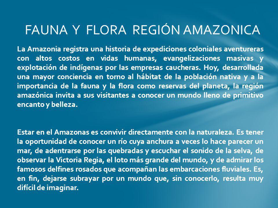 FAUNA Y FLORA REGIÓN AMAZONICA La Amazonia registra una historia de expediciones coloniales aventureras con altos costos en vidas humanas, evangelizac