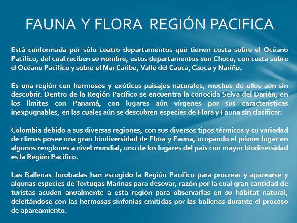 FAUNA Y FLORA REGIÓN PACIFICA Está conformada por sólo cuatro departamentos que tienen costa sobre el Océano Pacífico, del cual reciben su nombre, est
